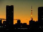 夕まずめ画像9.jpg